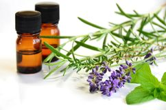 Essential Oils and Herbs for Skin